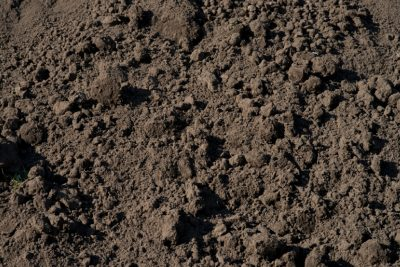 van den Broek product categorie Zwarte grond