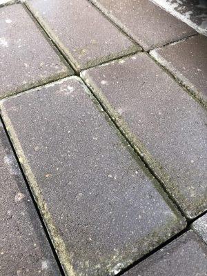 van den Broek product categorie Klinkers beton Foxwolde Restpartij ± 10,9 m²